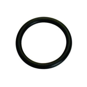 Champion 19mm (I.D.) x 2.5mm Metric O-Ring -5pk