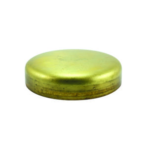 Champion 25mm Brass Expansion (Frost) Plug -Cup Type -5pk